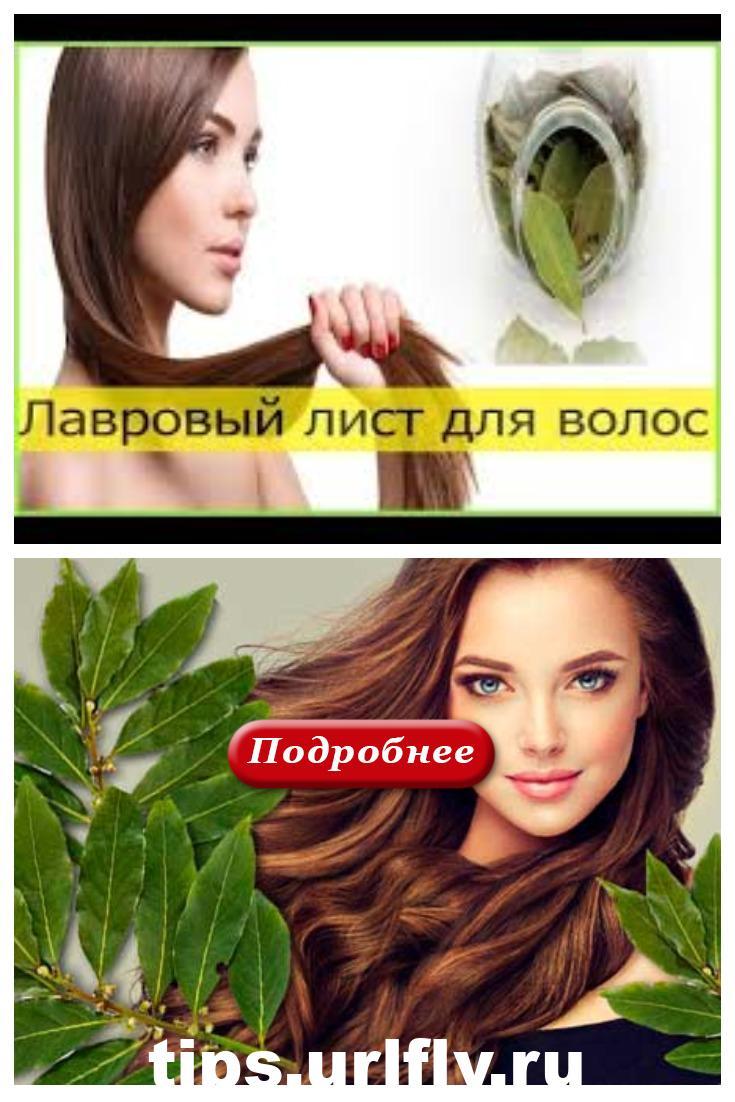 Лавровый лист для густоты и силы волос